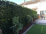 Greenfx Artificial Hedge screening