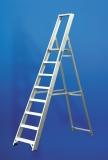 Dublin Ladders 6